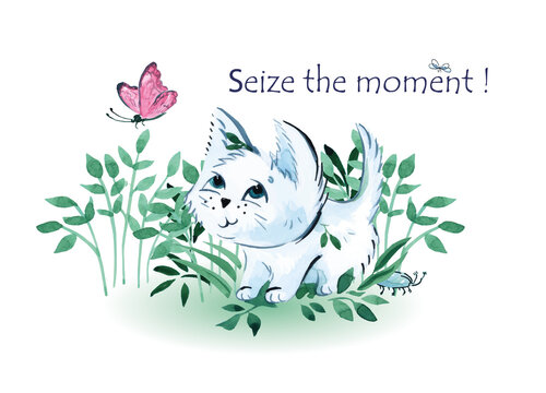illustration of a white kitten catching a butterfly with the inscription seize the moment on a white background