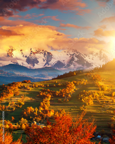 Wall mural Morning mountain landscape with colorful forest.