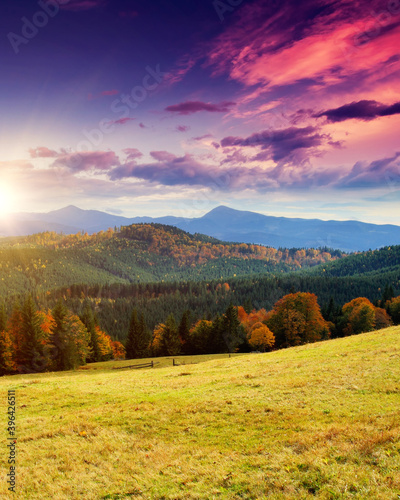 Wall mural Majestic morning mountain landscape with colorful forest.