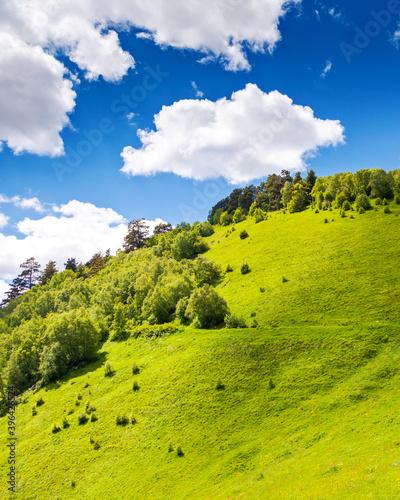Wall mural Beautiful view of alpine meadows.