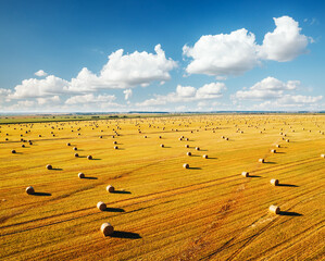 Wall Mural - Attractive view from a drone flying over the rural area and hay-roll on field.