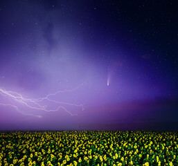 Wall Mural - Strong storm with bright and dangerous lightning at night.