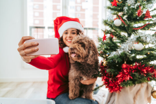 Selective focus. A beautiful brunette woman taking a photo with her Spanish water dog next to the Christmas tree. She is wearing a Santa Claus hat and a red sweater. Family dog Christmas tree concept