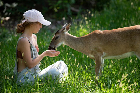 Young woman feed deers bambi. Cute wild animals concept.