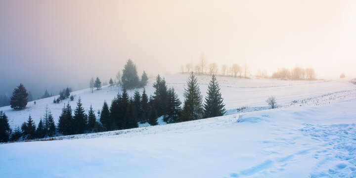 foggy countryside at dawn. beautiful rural landscape in wintertime. trees on snow covered hills beneath a glowing sky