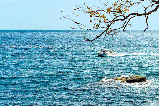 Boat on the sea reef and tree branch. A view with a horizon going into the distance. Summer day.