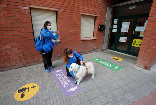 Andrea Galofrem and Meritxell Arias, dog-assisted intervention technicians, prepare dog Soul as they arrive for a therapy at Escola Iris in Sant Vicenc dels Horts