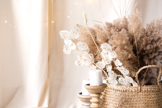 Pampas grass and lunaria are collected in a bouquet for room decor. Bouquet of dried flowers. Floral minimal home interior boho style. Boho style holiday photo zone decor
