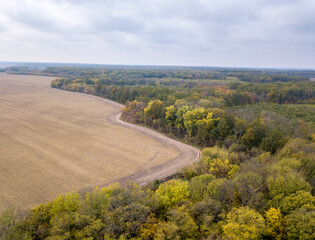 Wall Mural - Agricultural plowed fields with yellow autumn woods on a cloudy day.