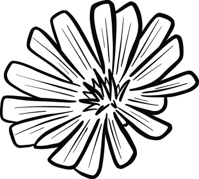 A Logo Design Of a Wildflower Flower Icon Buttercup, Daisy, Dandelion, Etc