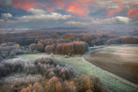 Beautiful sunrise over the frosty forest in Poland.