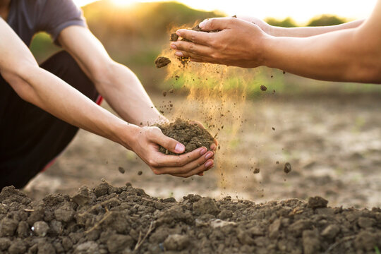 Expert hand of farmer pouring good soil to a hand of young farmer at garden or farm.