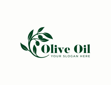 olive oil branch logo design
