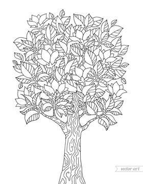 Magnolia tree with flowers isolated. Vector hand drawn artwork. Zentangle. Coloring book page for adult. Black and white. Vintage, retro style. Wallpaper, print, poster