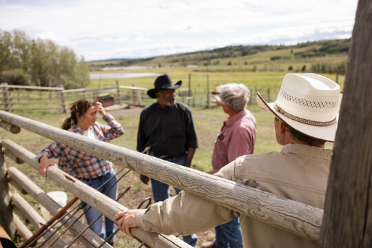 Cattle ranchers with branding irons talking at sunny pasture fence