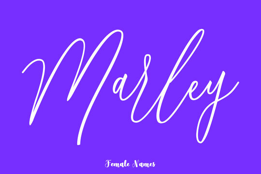 Marley -Female Name Cursive Calligraphy Text On Purple Background