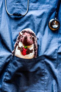 stethoscope, hedgehog toy in children's doctor pocket blue background top view mock-up