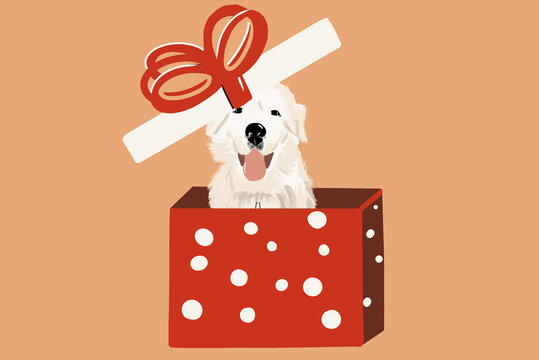 White dog in a gift box on the background. Vector illustration in flat cartoon style