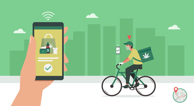 CBD delivery concept, delivery man riding bicycle on the way to customer home, human hand using smartphone with mobile app order cannabis online, smart logistic, vector flat illustration
