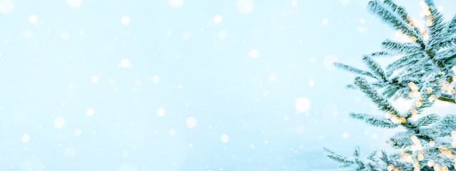 Winter / snow Christmas background banner panorama - Snowy frozen fir branches and bokeh lights with blue snowy snowfall sky