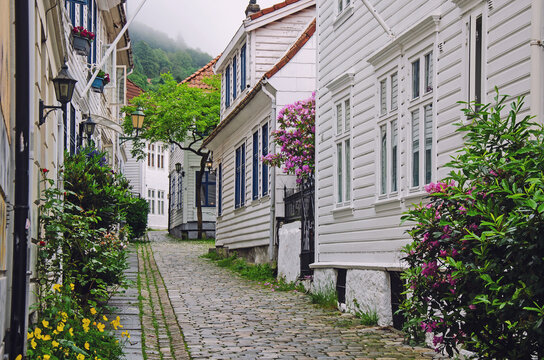 A lot of flowers on the street of wooden houses in Bergen, Norway
