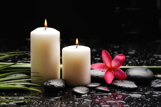 spa still life of with red frangipani and two candle with zen black stones ,green palm wet background