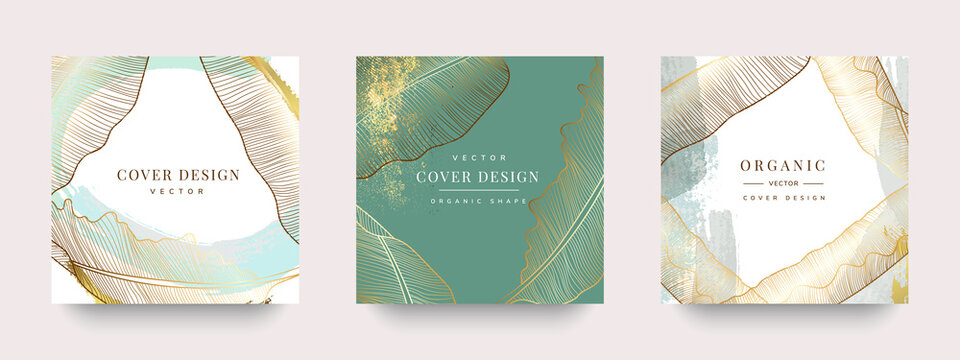 Luxury Social media stories and post template vector set. Tropical and botanical warm earth tone square cover background collection.