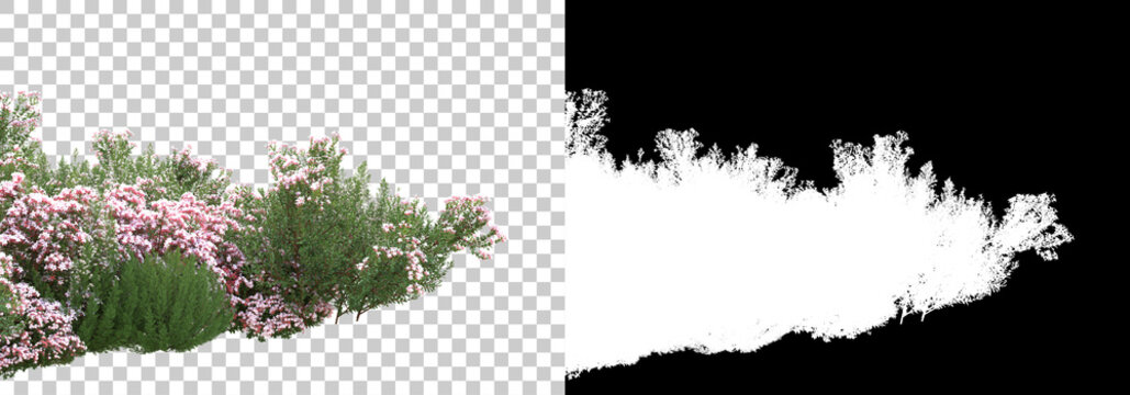Green surface covered with wild grass and flowers  isolated on background with mask. 3d rendering - illustration