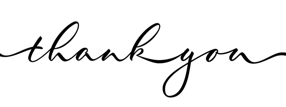 Thank you - isolated inscription on white background. Hand lettering. Vector.