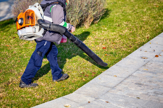 Worker with blower backpack blowing fallen leaves