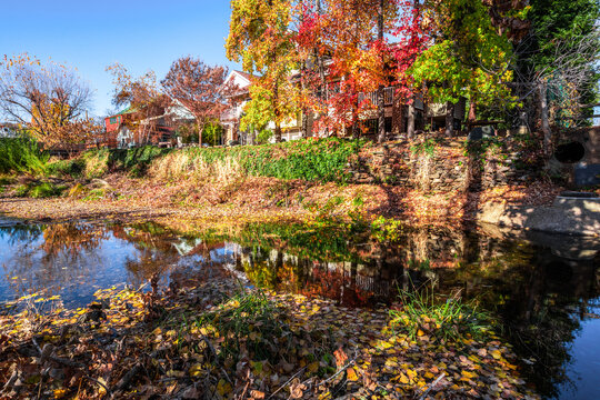 Reflection of fall colors on Sutter Creek