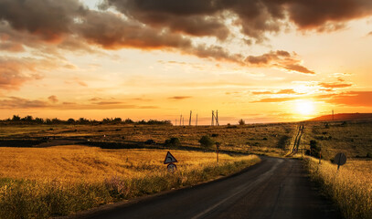 Fotobehang - The road stretching into the distance among the fields at sunset.
