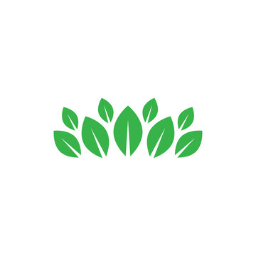 Rows of green leaves. Vector drawing