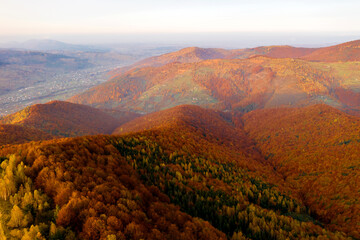 Wall Mural - Splendid aerial photography of the autumn forest in the mountains.