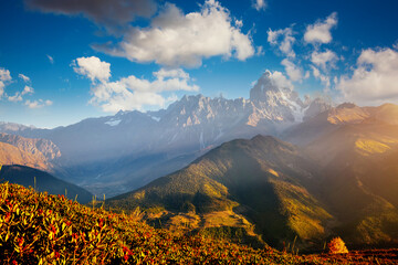 Wall Mural - Beautiful view in high Caucasus mountains on sunny day. Location place of  Upper Svaneti, Georgia.