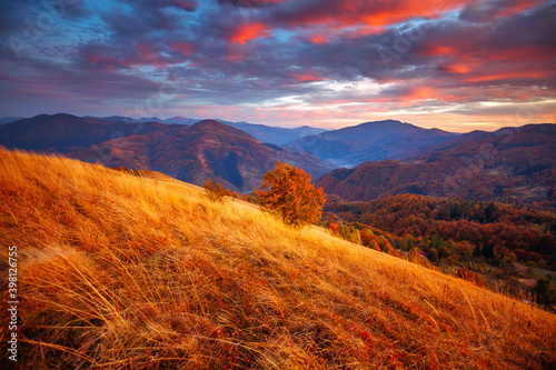 Wall mural Attractive evening landscape illuminated by the sunset. Carpathian mountains, Ukraine, Europe.