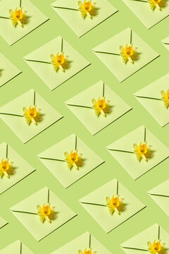 Greeting pattern of envelopes with narcissus.