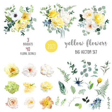 Yellow rose, hydrangea, white peony, lily, anemone, spring garden flowers