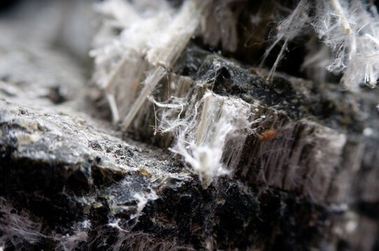asbestos chrysotile fibers