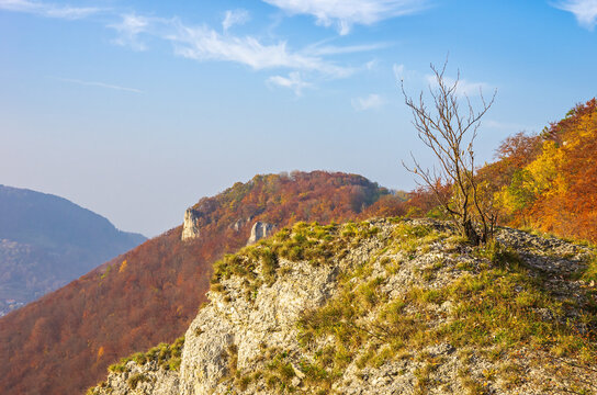 Autumn mountainscape with limestone rocks and bushes on the Swabian Jura at the Alb escarpment near Lichtenstein, Baden-Württemberg, Germany.