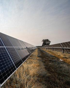 Solar field in North Texas
