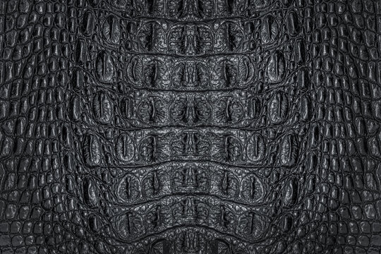 Black crocodile leather texture for background