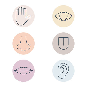 Human senses colorful line icon set. People part of body in circle shapes. Hand, eye, nose, tongue, lips and ear. Vector medical illustration isolated.