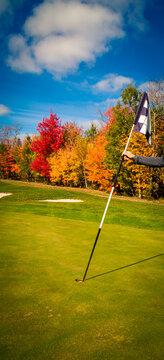 golfer putting in the golf flag