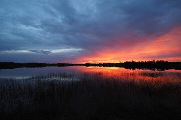 Colorful sunrise cloudscape reflected on tranquil water of Nine Mile Pond in Everglades National Park, Florida.