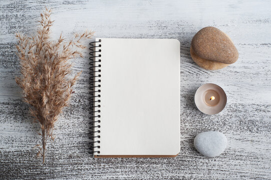Empty open notebook and dry flowers