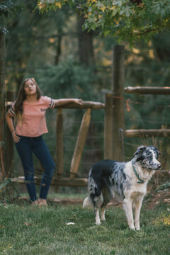 Teen girl with her border collie who is on alert.