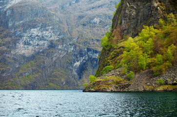 Wall Mural - The beauty of Norwegian fjords
