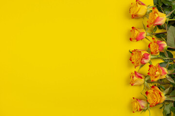 Valentine's Day, wedding or mother's day background. Red yellow roses on yellow background. Holiday concept. Flat lay, mockup, top view, copy space.