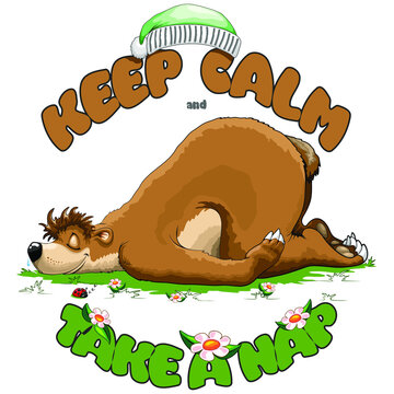 Keep Calm and Take a Nap, Sleeping Bear and tiny cute Ladybug Vector Illustration